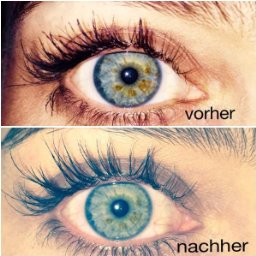 Wimpernserum Testsieger